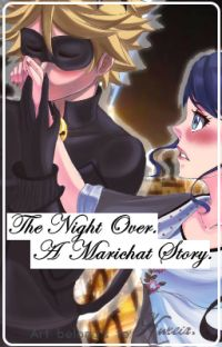 A Night Over {A Marichat Story} cover