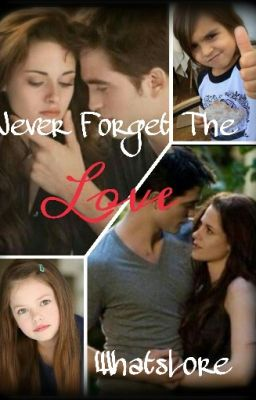 Never Forget The Love