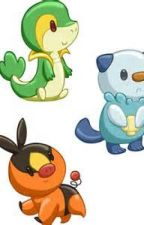 Ask or dare me and snivy tepig oshawott and pidove by Therti_Mageno