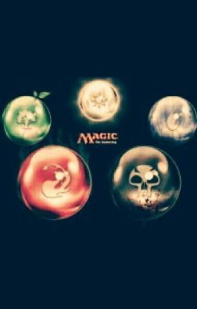 Magic Knights by aehr_mae