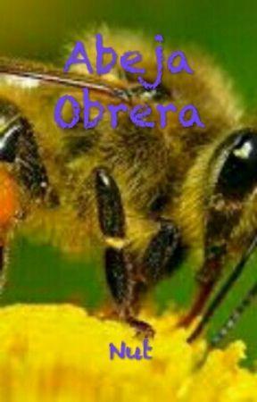 Abeja obrera by soloNut