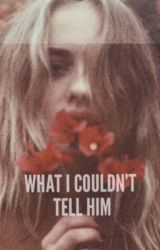 What I Couldn't Tell Him by wildwkdslipofagirl