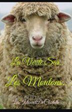 La vérité sur les Moutons.. by LesIstouarDeClodette