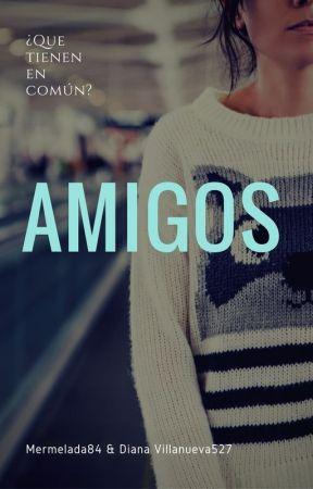 Amigos by Vol013