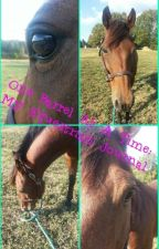 One Barrel At A Time: My Equestrian Journal by Spunkyhorse14