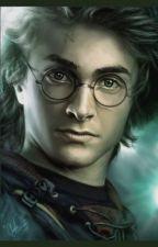 Harry Potter i szczęśliwa rodzina by DawidBednarek0