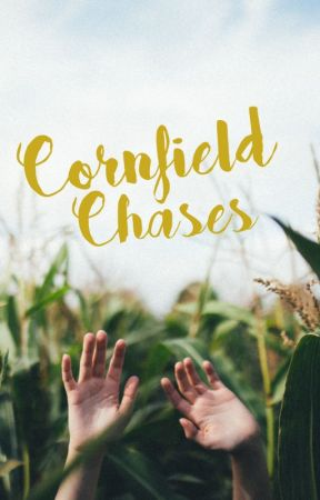 Cornfield Chases by TheHuntersBird