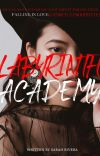 LABYRINTH ACADEMY(TO BE RE-PUBLSIHED SOON) cover