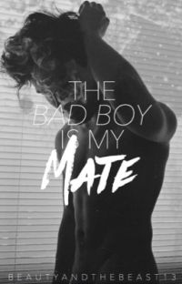 The Bad Boy Is My Mate cover