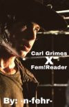 Carl Grimes x Fem Reader Book 2 cover