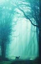 The Forest - A Twenty One Pilots Fanfic by EpicTaro