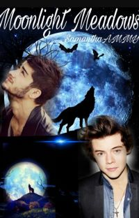Moonlight Meadows [Zarry]  cover