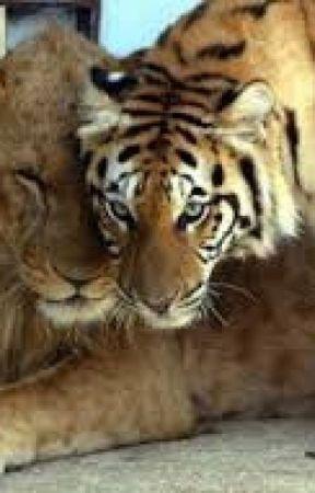 Minha vida de tigre parte 1 by gabriellesantos098