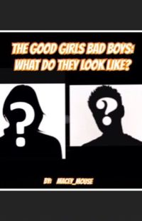 The Good Girls Bad boys: what do they look like? cover