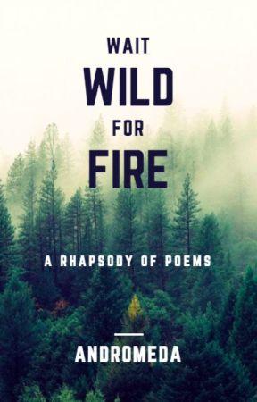 Wild Fire by XxdromedaxX
