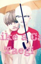 Like a Cat • Taegi by Semsser90