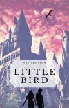 Little Bird cover