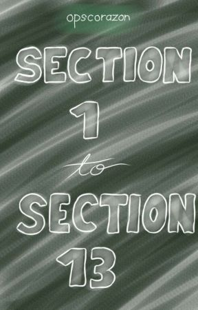 Section 1 - Section 13 by opscorazon
