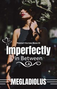 Perfect Haters Book 3: Imperfectly In Between cover