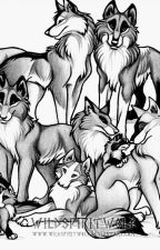 Steven Universe Wolf Pack by Fido2015