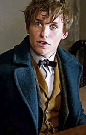 The help he'll never ask for ( Newt Scamander fanfiction) by Leahtails
