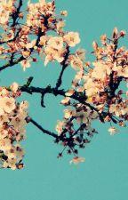 A  Cherry Blossom Ending(A Yu Yu Hakusho YusukeXKeiko Short Plot Edit) by azusachii