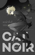 The Night Lovers (a Chat Noir x Reader) by Tiffanythetot