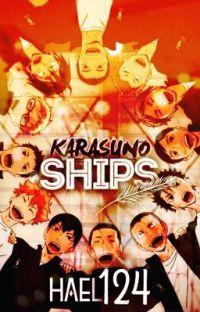 Karasuno Ships cover