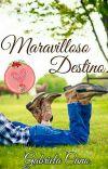 Maravilloso Destino. cover