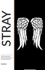 Stray // Daryl Dixon by lukesbooo