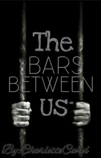 The Bars Between Us cover
