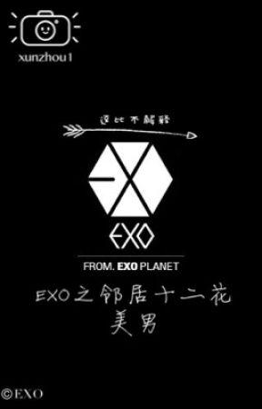 我的邻居是EXO?【邻居十二花美男】 by Zhengwb12