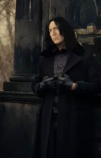 Severus Snape-After the War cover