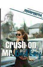 Crush on Mr Bad boy by _mysterygirl14_