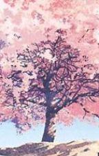 [ Nhân Mã - Song Ngư ] Hoa anh đào by uchiharumi1412