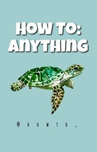 How To: Anything  cover
