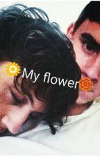 My flower (tronnor) by Okmiau