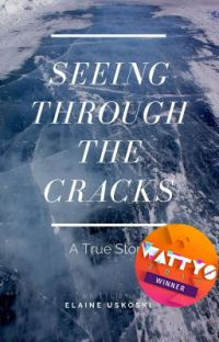 Seeing Through the Cracks cover