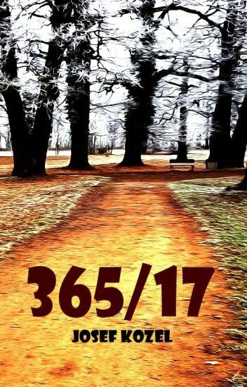 365/17