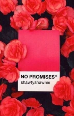 No Promises // S.M by medusasmuseum