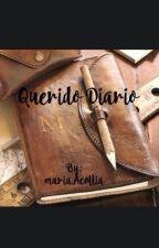 Querido diario by mariaAcollia