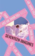 seventeen imagines by sunflowerkwan
