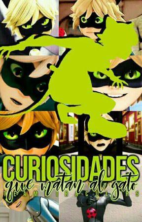 Curiosidades que matan al gato by TeamMiraculers