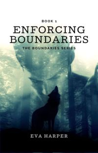 Enforcing Boundaries (Book 1) cover