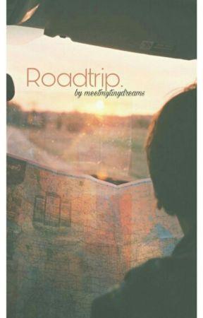 Roadtrip. by meetmytinydreams