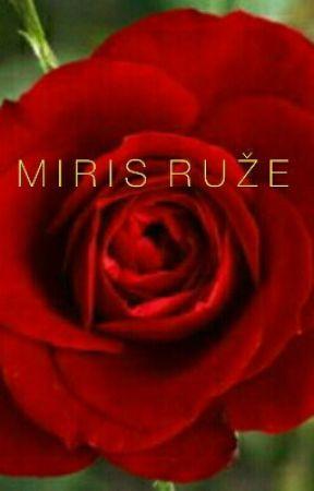 Miris ruže by DejanMilanovic