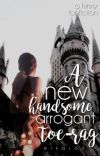a new handsome, arrogant, toe-rag || harry x ginny  cover