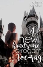 A New Handsome, Arrogant, Toe-rag ↠ Harry x Ginny ||Completed|| AU by Erkaroo