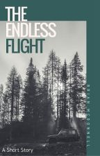 The Endless Flight by theblasefanboy