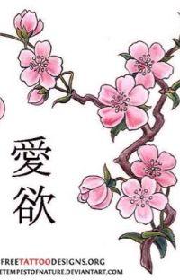 Kakashi's Daughter cover